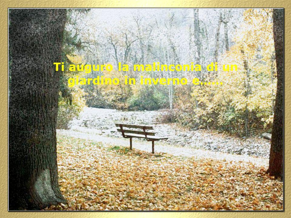Ti auguro la malinconia di un giardino in inverno e……