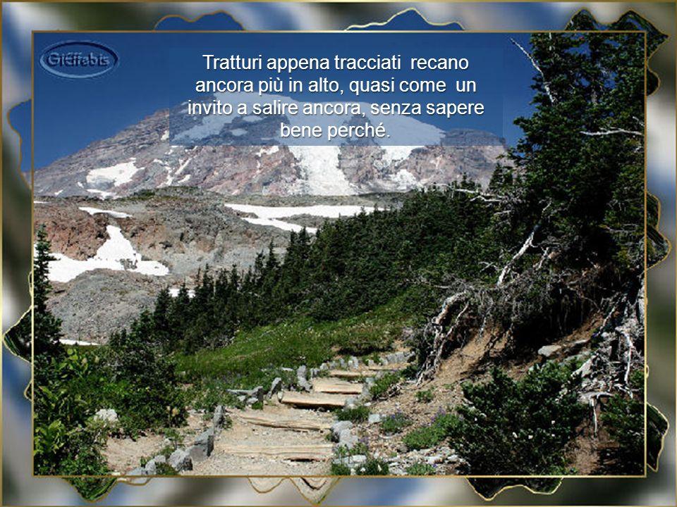 Ma il viaggio premia sempre e soddisfa fedelmente le aspettative: la montagna è tutta da contemplare.