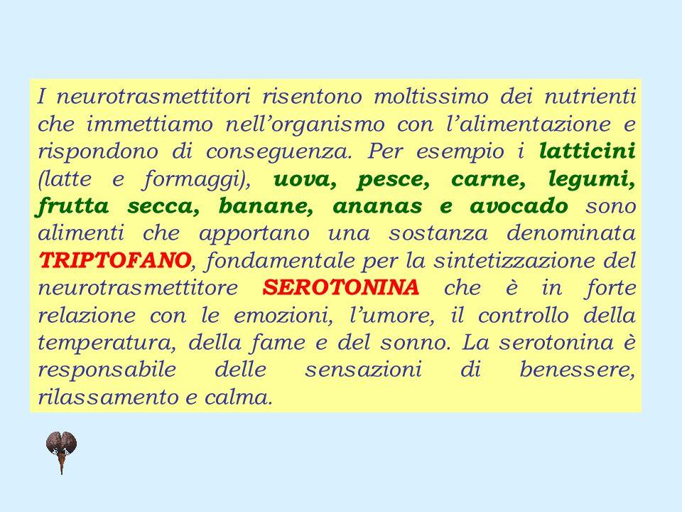 I neurotrasmettitori risentono moltissimo dei nutrienti che immettiamo nellorganismo con lalimentazione e rispondono di conseguenza.