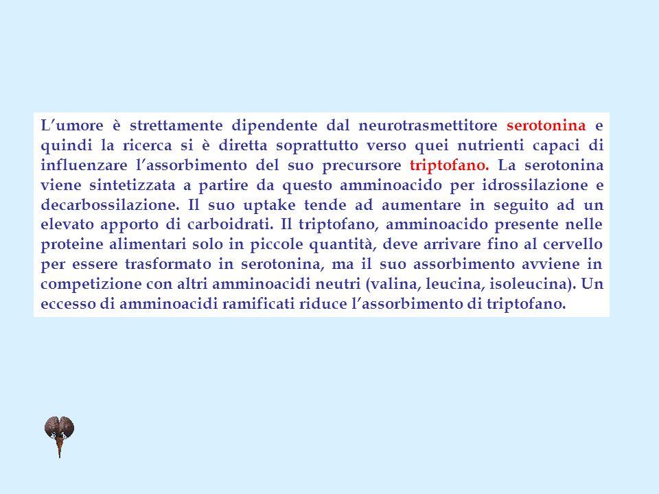 Lumore è strettamente dipendente dal neurotrasmettitore serotonina e quindi la ricerca si è diretta soprattutto verso quei nutrienti capaci di influenzare lassorbimento del suo precursore triptofano.