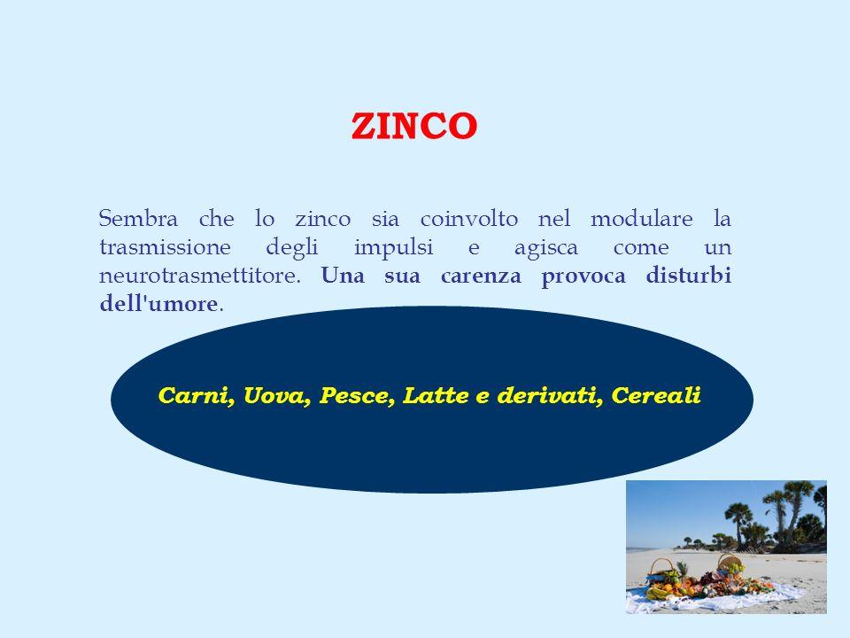 ZINCO Sembra che lo zinco sia coinvolto nel modulare la trasmissione degli impulsi e agisca come un neurotrasmettitore. Una sua carenza provoca distur