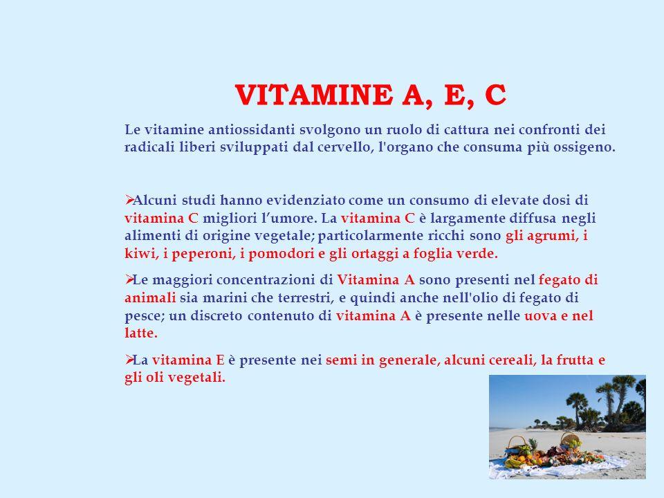 VITAMINE A, E, C Le vitamine antiossidanti svolgono un ruolo di cattura nei confronti dei radicali liberi sviluppati dal cervello, l organo che consuma più ossigeno.