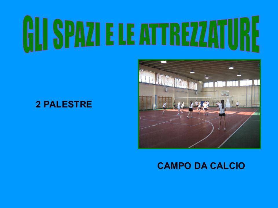 2 PALESTRE CAMPO DA CALCIO