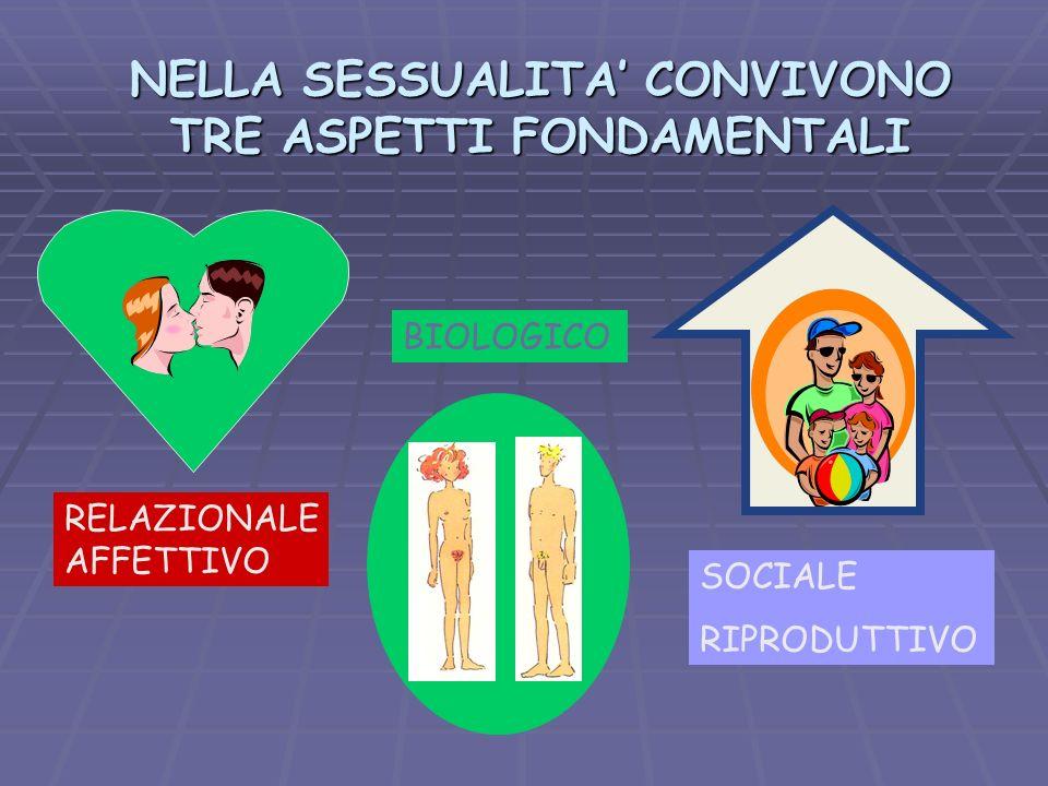 NELLA SESSUALITA CONVIVONO TRE ASPETTI FONDAMENTALI RELAZIONALE AFFETTIVO BIOLOGICO SOCIALE RIPRODUTTIVO