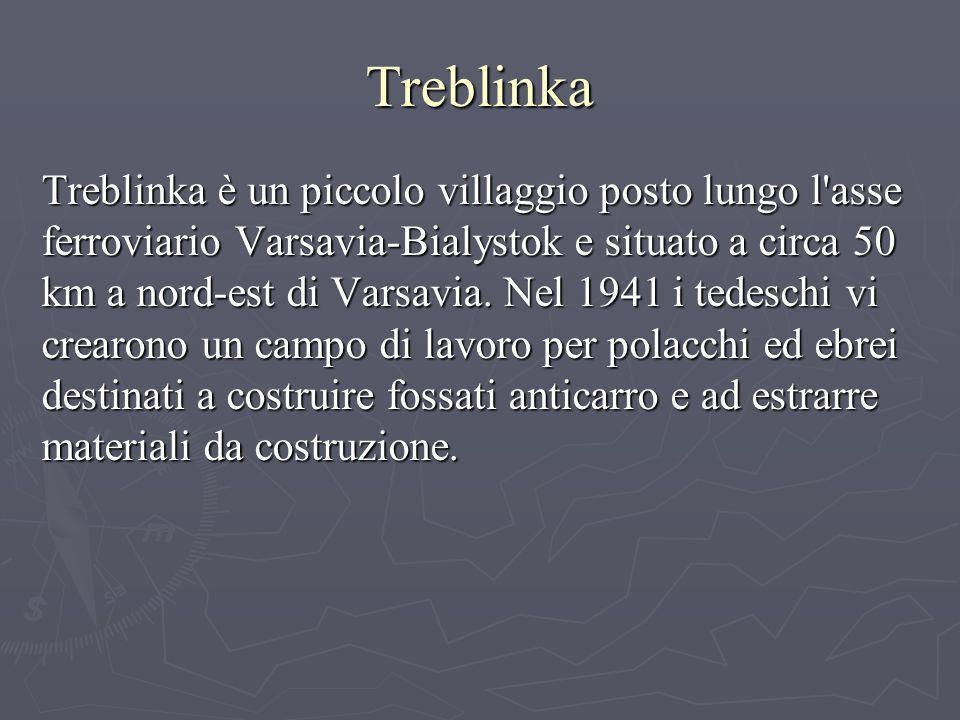 Treblinka Treblinka è un piccolo villaggio posto lungo l asse ferroviario Varsavia-Bialystok e situato a circa 50 km a nord-est di Varsavia.