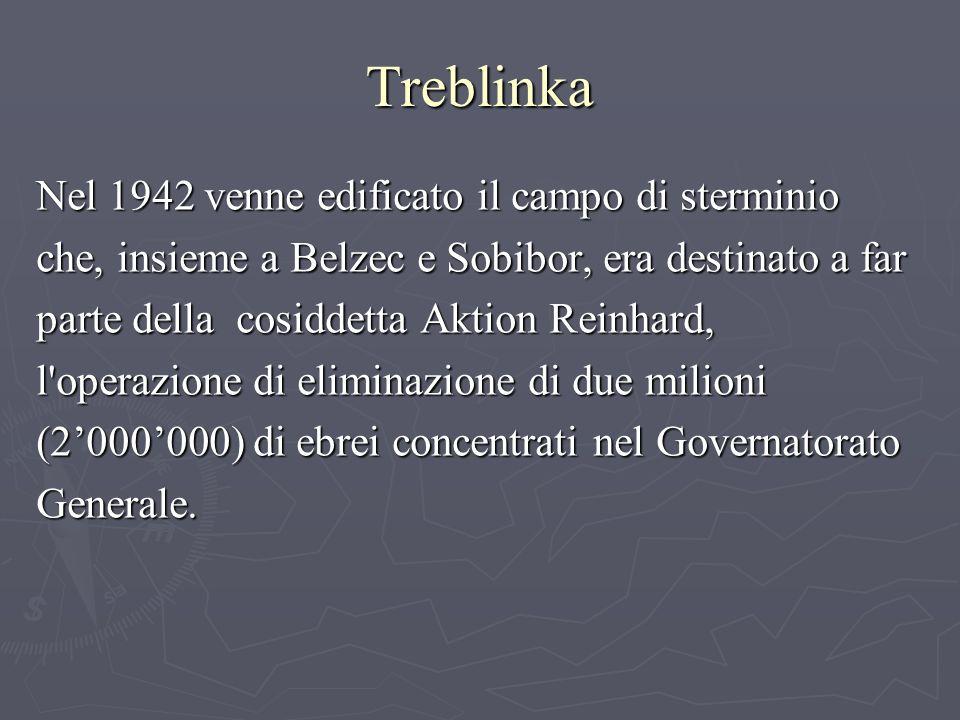 Treblinka Nel 1942 venne edificato il campo di sterminio che, insieme a Belzec e Sobibor, era destinato a far parte della cosiddetta Aktion Reinhard, l operazione di eliminazione di due milioni (2000000) di ebrei concentrati nel Governatorato Generale.