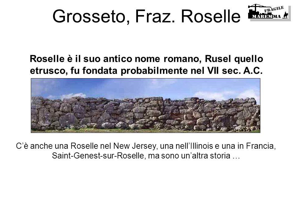 Roselle è il suo antico nome romano, Rusel quello etrusco, fu fondata probabilmente nel VII sec. A.C. Cè anche una Roselle nel New Jersey, una nellIll