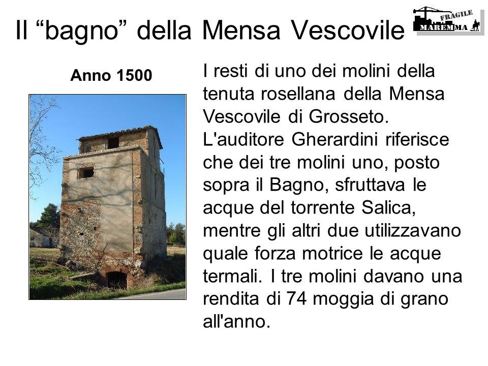 Il bagno della Mensa Vescovile I resti di uno dei molini della tenuta rosellana della Mensa Vescovile di Grosseto. L'auditore Gherardini riferisce che