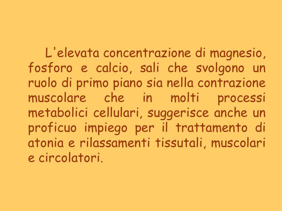 L'elevata concentrazione di magnesio, fosforo e calcio, sali che svolgono un ruolo di primo piano sia nella contrazione muscolare che in molti process