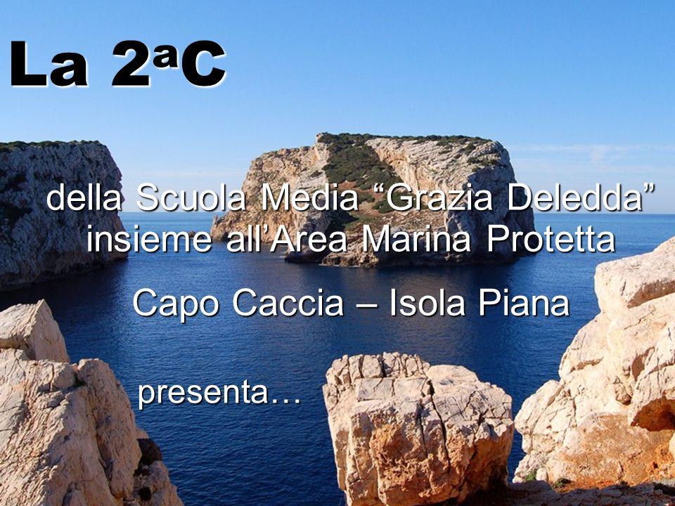 della Scuola Media Grazia Deledda insieme allArea Marina Protetta Capo Caccia – Isola Piana La 2 a C presenta…