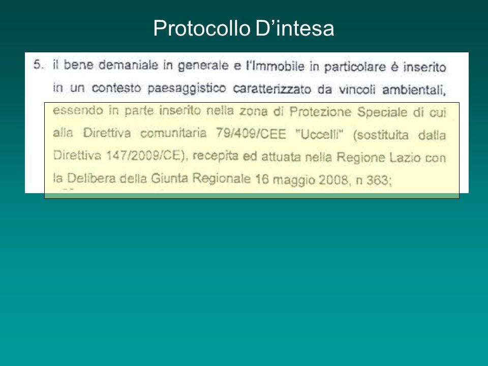 Protocollo Dintesa