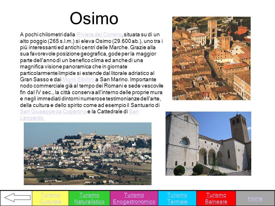 A pochi chilometri dalla Riviera del Conero, situata su di un alto poggio (265 s.l.m.) si eleva Osimo (29.600 ab.), uno tra i più interessanti ed anti