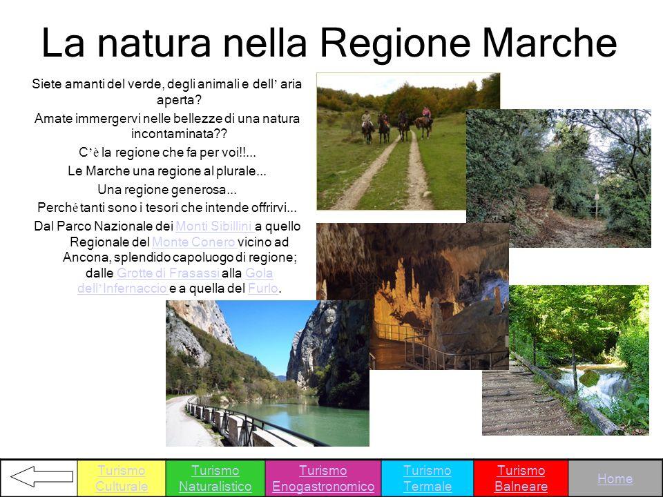 La natura nella Regione Marche Siete amanti del verde, degli animali e dell aria aperta? Amate immergervi nelle bellezze di una natura incontaminata??