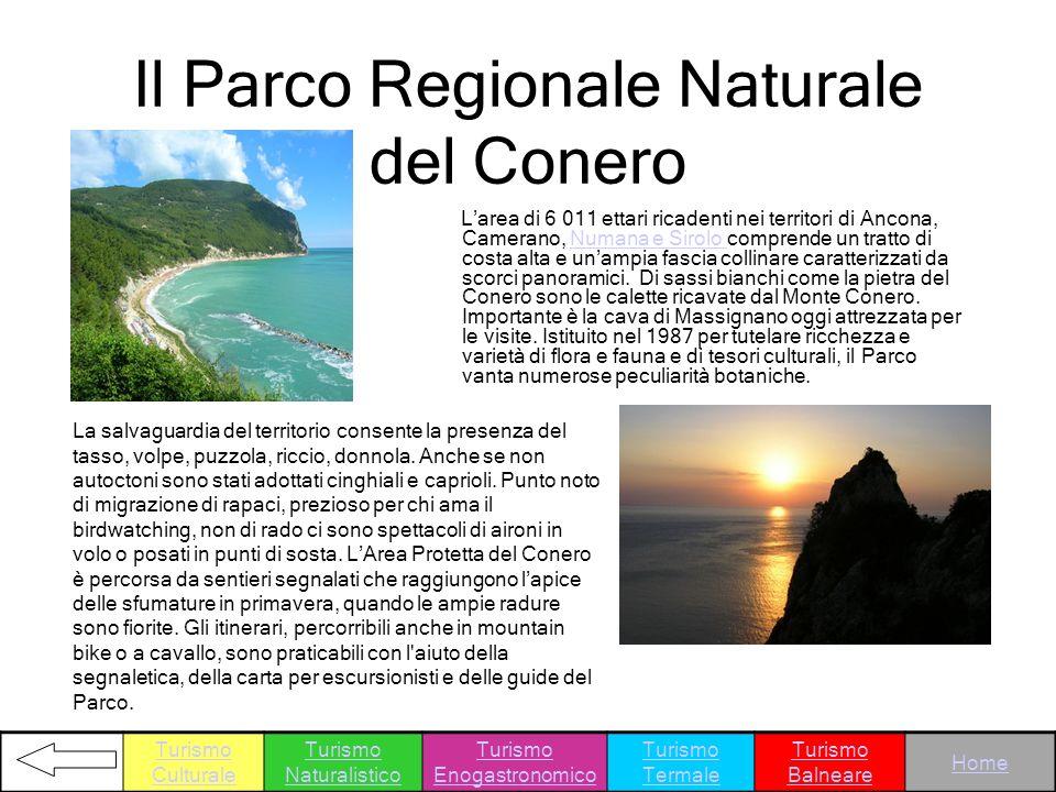 Il Parco Regionale Naturale del Conero Larea di 6 011 ettari ricadenti nei territori di Ancona, Camerano, Numana e Sirolo comprende un tratto di costa