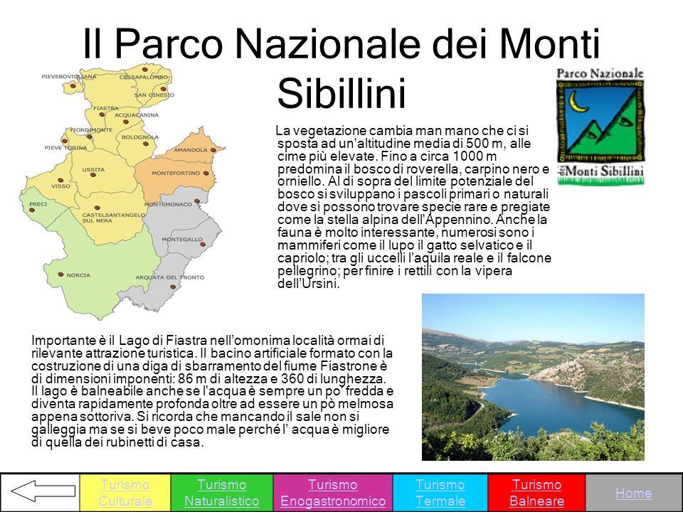 Il Parco Nazionale dei Monti Sibillini La vegetazione cambia man mano che ci si sposta ad un'altitudine media di 500 m, alle cime più elevate. Fino a