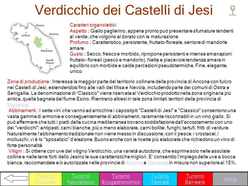 Verdicchio dei Castelli di Jesi Caratteri organolettici Aspetto : Giallo paglierino, appena pronto può presentare sfumature tendenti al verde, che vol