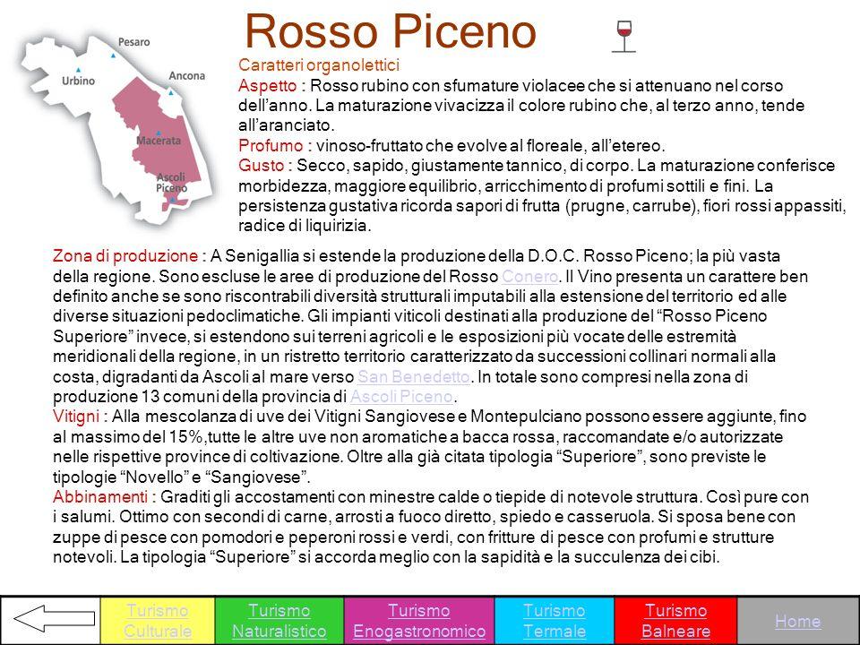 Rosso Piceno Caratteri organolettici Aspetto : Rosso rubino con sfumature violacee che si attenuano nel corso dellanno. La maturazione vivacizza il co