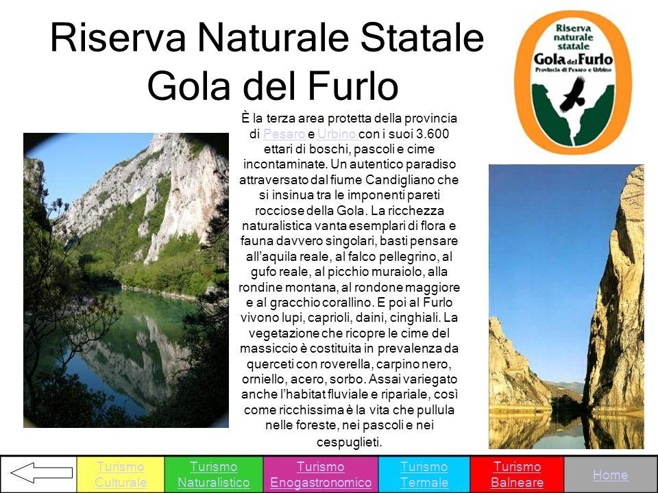 Riserva Naturale Statale Gola del Furlo È la terza area protetta della provincia di Pesaro e Urbino con i suoi 3.600 ettari di boschi, pascoli e cime