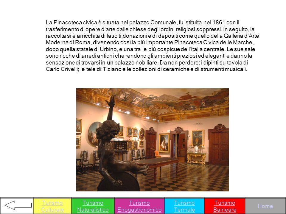 La Pinacoteca civica è situata nel palazzo Comunale, fu istituita nel 1861 con il trasferimento di opere d'arte dalle chiese degli ordini religiosi so