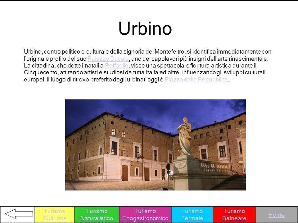 Urbino Urbino, centro politico e culturale della signoria dei Montefeltro, si identifica immediatamente con loriginale profilo del suo Palazzo Ducale,