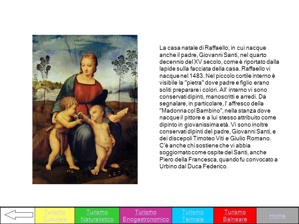 La casa natale di Raffaello, in cui nacque anche il padre, Giovanni Santi, nel quarto decennio del XV secolo, come è riportato dalla lapide sulla facc