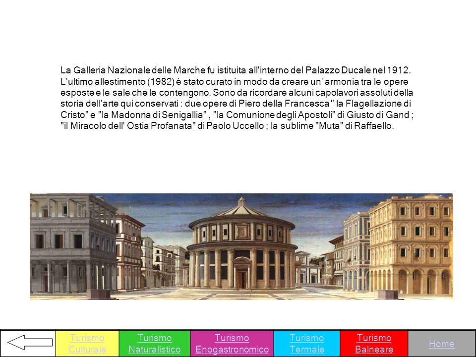 La Galleria Nazionale delle Marche fu istituita all'interno del Palazzo Ducale nel 1912. L'ultimo allestimento (1982) è stato curato in modo da creare