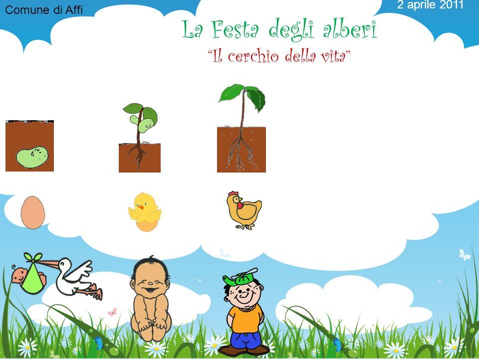 Comune di Affi 2 aprile 2011 La Festa degli alberi Il cerchio della vita
