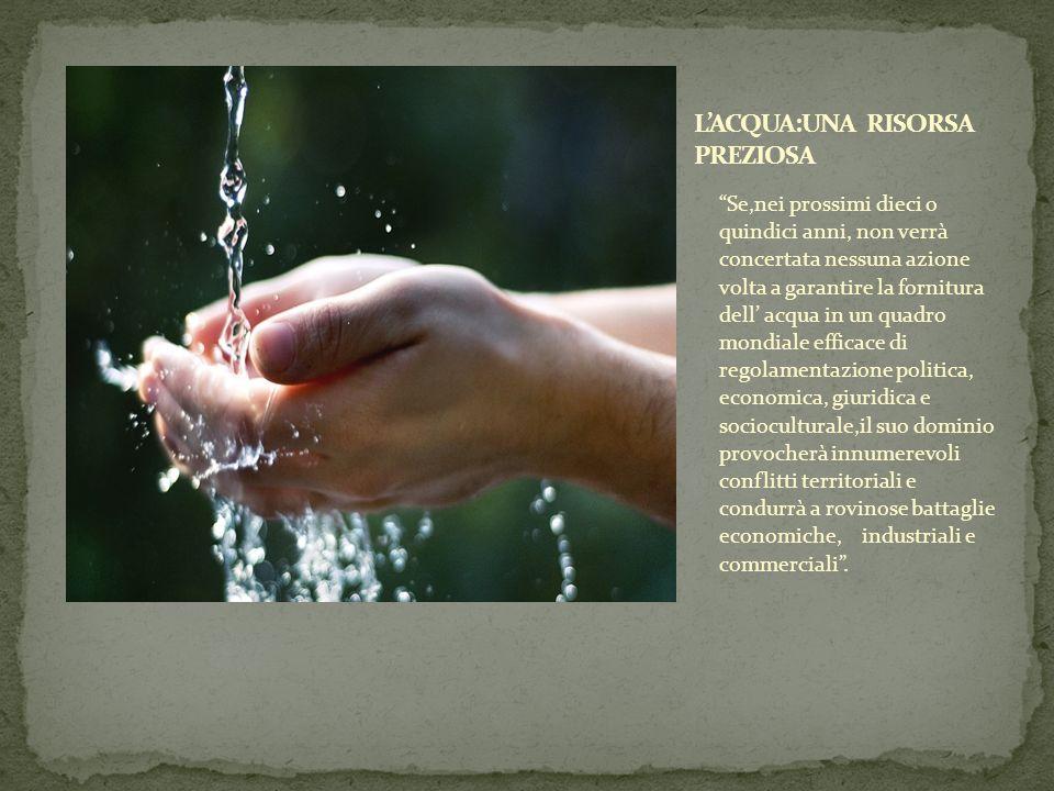 Se,nei prossimi dieci o quindici anni, non verrà concertata nessuna azione volta a garantire la fornitura dell acqua in un quadro mondiale efficace di