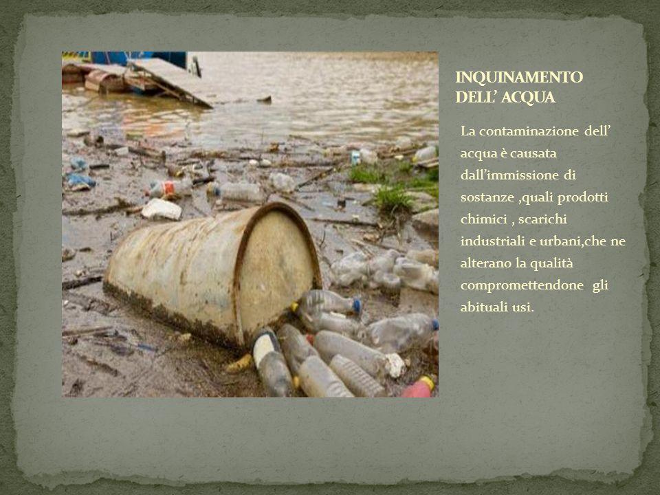 La contaminazione dell acqua è causata dallimmissione di sostanze,quali prodotti chimici, scarichi industriali e urbani,che ne alterano la qualità com