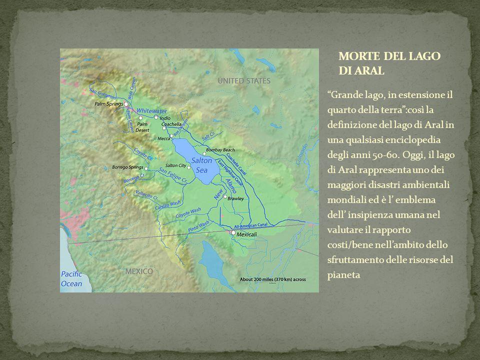 Grande lago, in estensione il quarto della terra:così la definizione del lago di Aral in una qualsiasi enciclopedia degli anni 50-60.