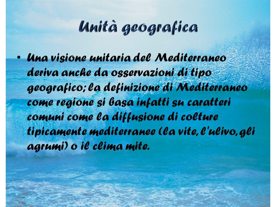 Una visione unitaria del Mediterraneo deriva anche da osservazioni di tipo geografico; la definizione di Mediterraneo come regione si basa infatti su