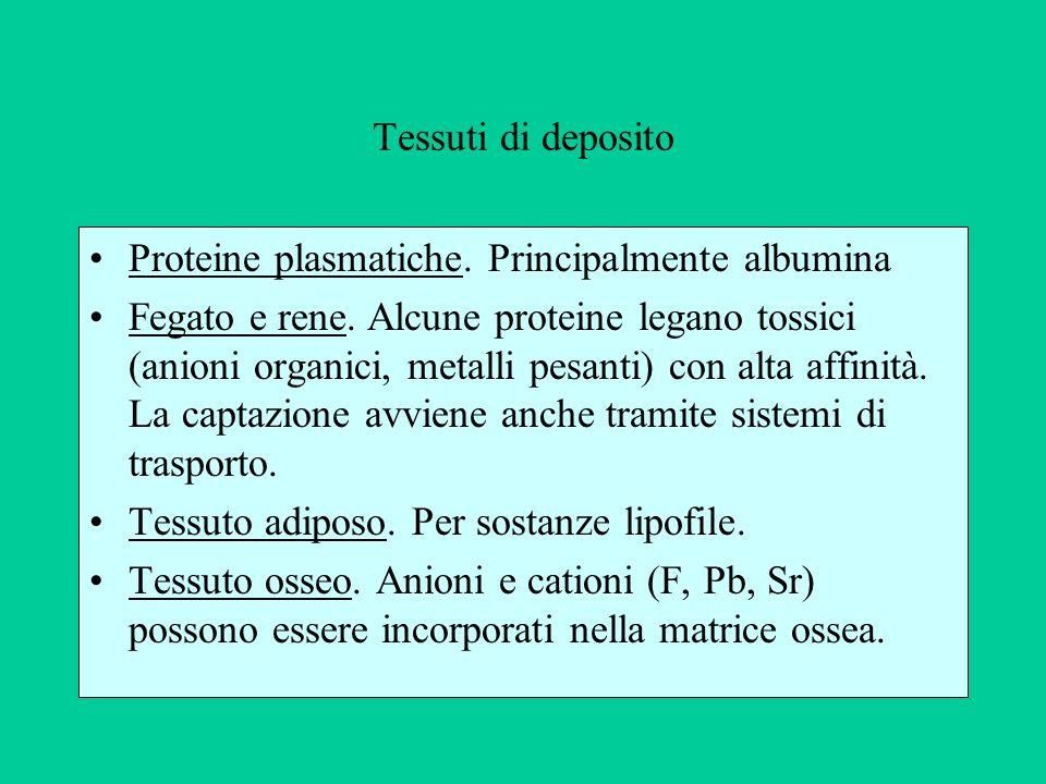 Tessuti di deposito Proteine plasmatiche. Principalmente albumina Fegato e rene. Alcune proteine legano tossici (anioni organici, metalli pesanti) con