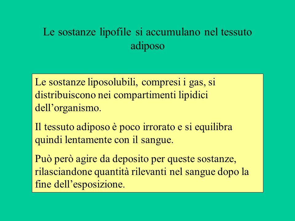Le sostanze liposolubili, compresi i gas, si distribuiscono nei compartimenti lipidici dellorganismo. Il tessuto adiposo è poco irrorato e si equilibr