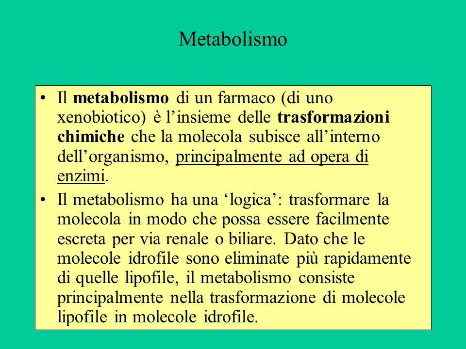 Metabolismo Il metabolismo di un farmaco (di uno xenobiotico) è linsieme delle trasformazioni chimiche che la molecola subisce allinterno dellorganism