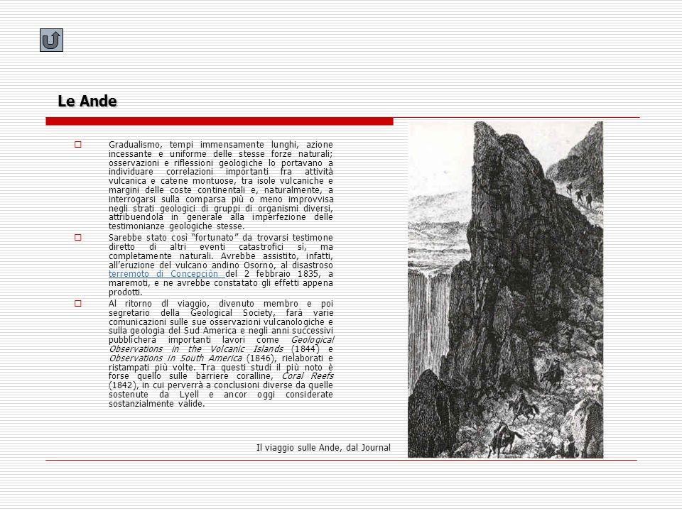 Le Ande Gradualismo, tempi immensamente lunghi, azione incessante e uniforme delle stesse forze naturali; osservazioni e riflessioni geologiche lo por