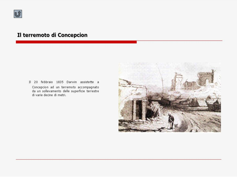 Il terremoto di Concepcion Il 20 febbraio 1835 Darwin assistette a Concepcion ad un terremoto accompagnato da un sollevamento delle superficie terrest
