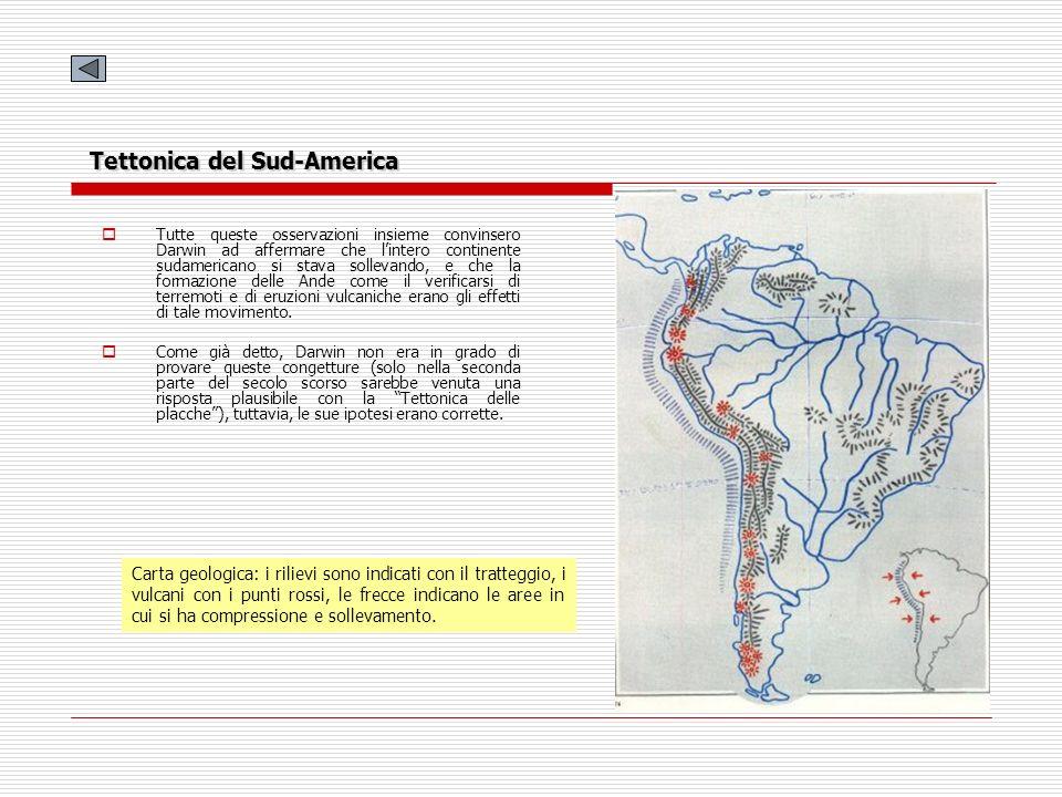 Carta geologica: i rilievi sono indicati con il tratteggio, i vulcani con i punti rossi, le frecce indicano le aree in cui si ha compressione e sollev