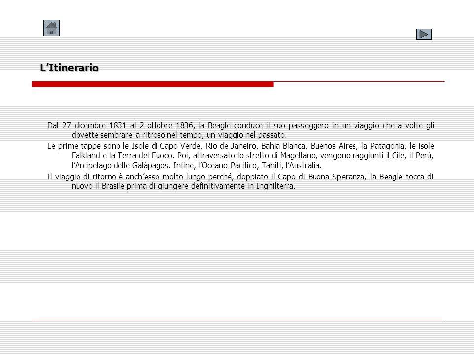Litinerario della Beagle - America Latina