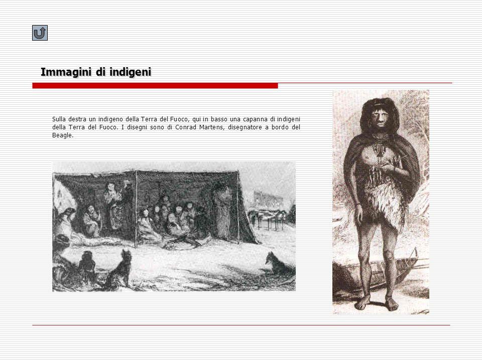 Immagini di indigeni Sulla destra un indigeno della Terra del Fuoco, qui in basso una capanna di indigeni della Terra del Fuoco. I disegni sono di Con