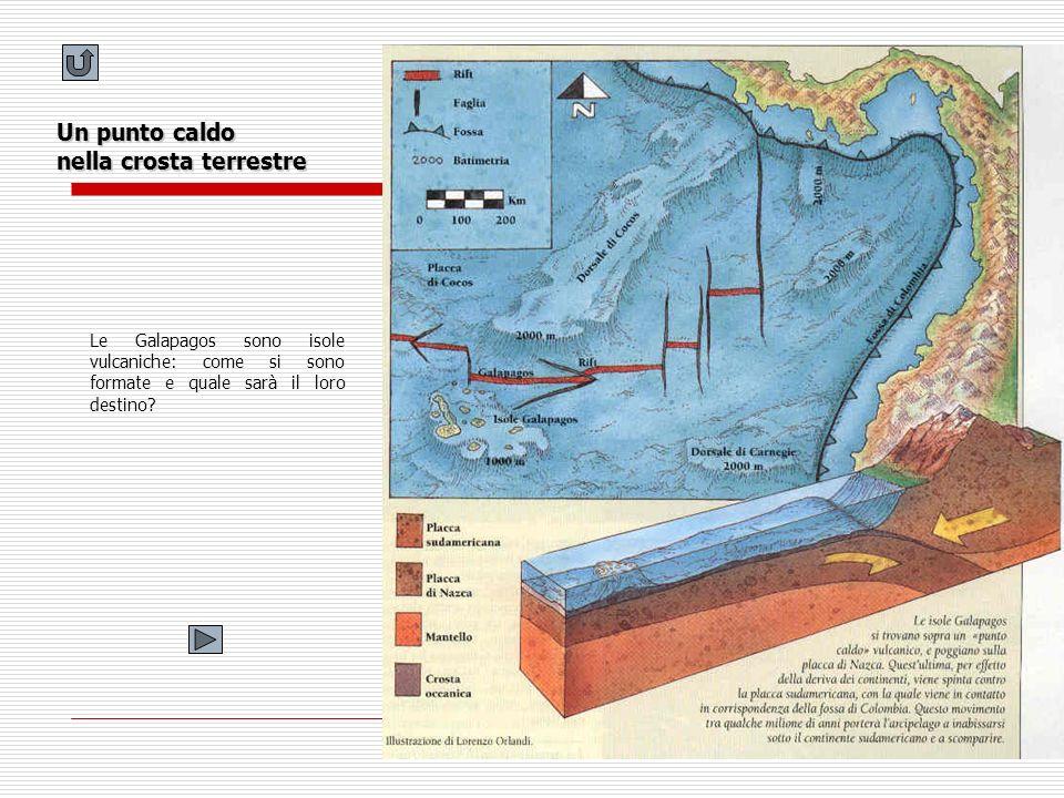 Un punto caldo nella crosta terrestre Le Galapagos sono isole vulcaniche: come si sono formate e quale sarà il loro destino?