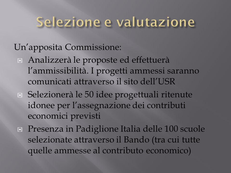 Unapposita Commissione: Analizzerà le proposte ed effettuerà lammissibilità. I progetti ammessi saranno comunicati attraverso il sito dellUSR Selezion