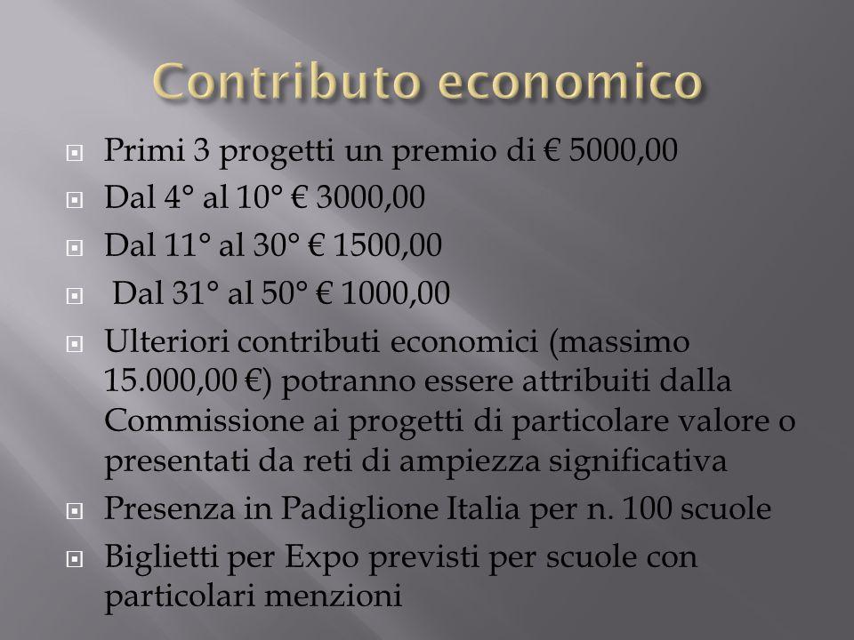 Primi 3 progetti un premio di 5000,00 Dal 4° al 10° 3000,00 Dal 11° al 30° 1500,00 Dal 31° al 50° 1000,00 Ulteriori contributi economici (massimo 15.0