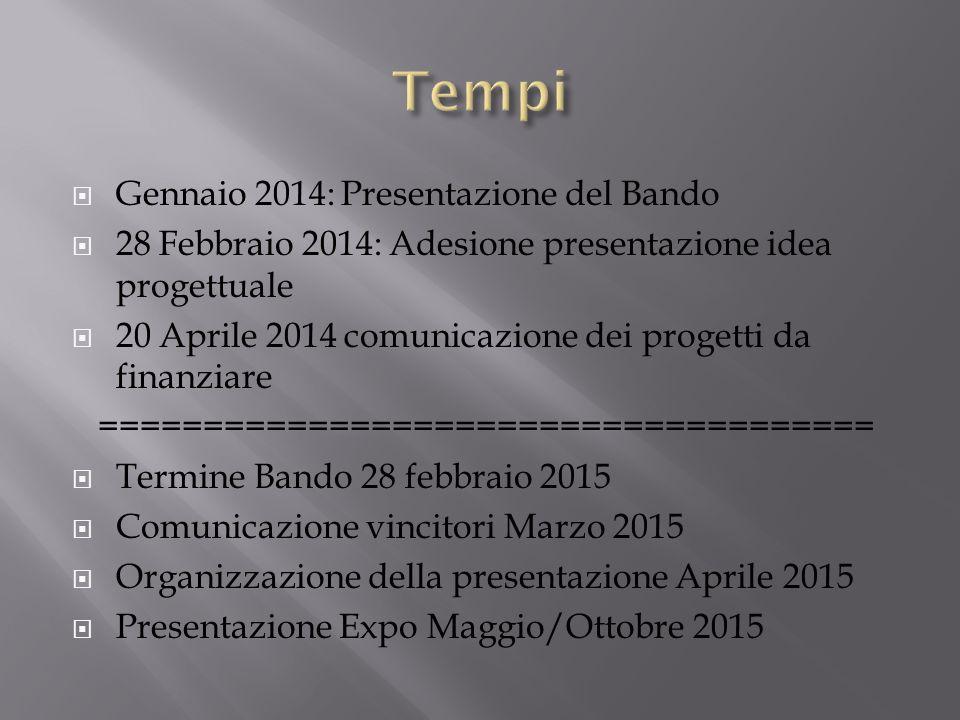 Gennaio 2014: Presentazione del Bando 28 Febbraio 2014: Adesione presentazione idea progettuale 20 Aprile 2014 comunicazione dei progetti da finanziar