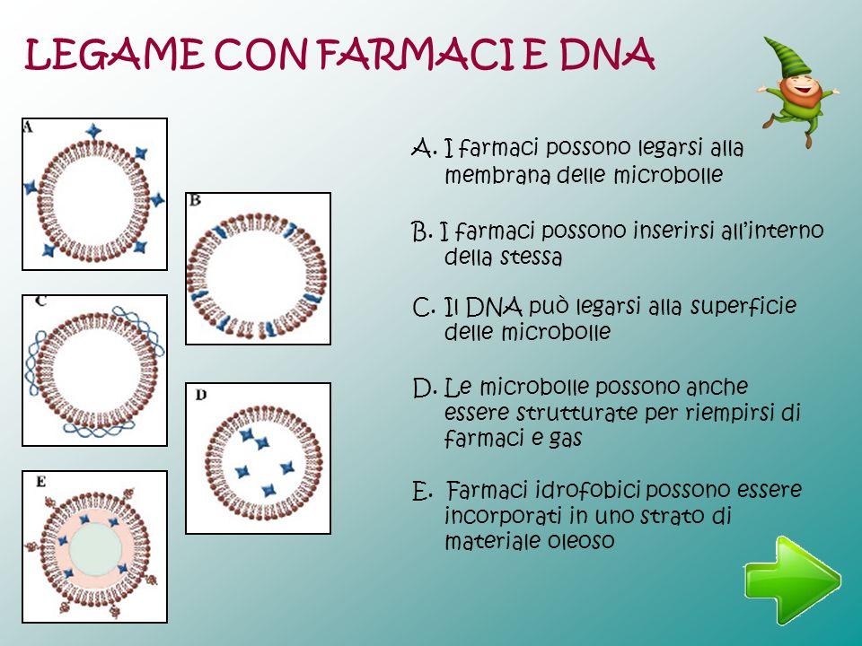 E. Farmaci idrofobici possono essere incorporati in uno strato di materiale oleoso D. Le microbolle possono anche essere strutturate per riempirsi di