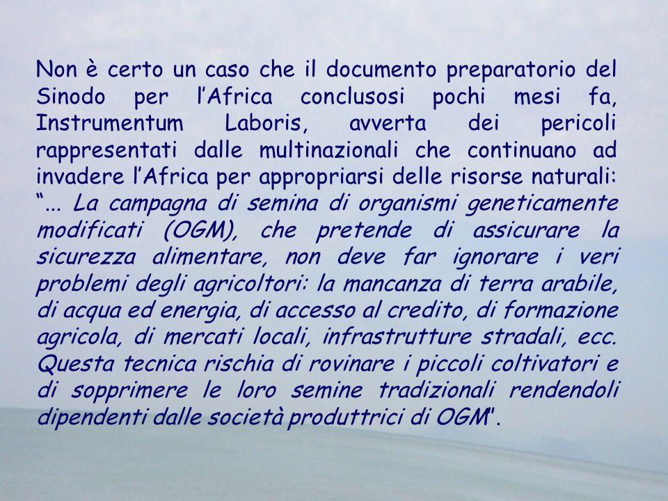 Non è certo un caso che il documento preparatorio del Sinodo per lAfrica conclusosi pochi mesi fa, Instrumentum Laboris, avverta dei pericoli rapprese