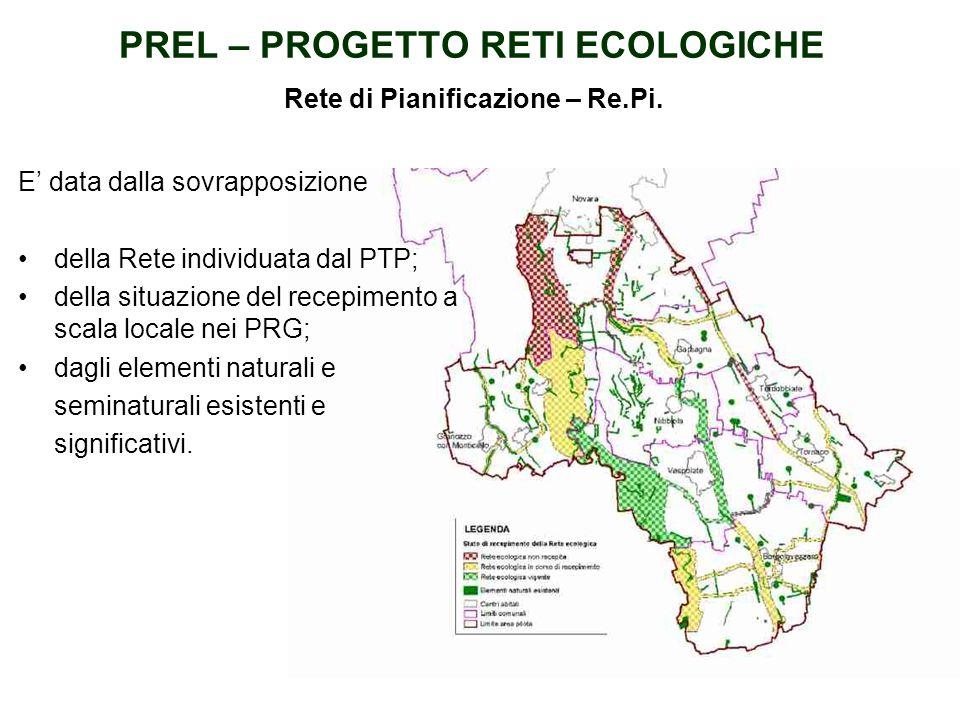 RETE ECOLOGICA PREVISTA DAL PTP Il Progetto Strategico, comporta lattivazione di un Processo Strategico Partecipativo, la Provincia di Novara ha scelt