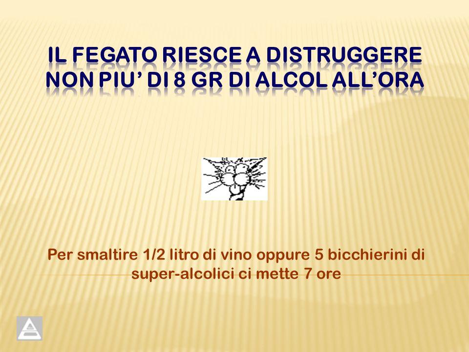 Per smaltire 1/2 litro di vino oppure 5 bicchierini di super-alcolici ci mette 7 ore
