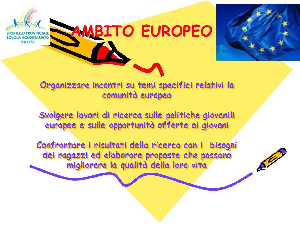 Organizzare incontri su temi specifici relativi la comunità europea Svolgere lavori di ricerca sulle politiche giovanili europee e sulle opportunità o