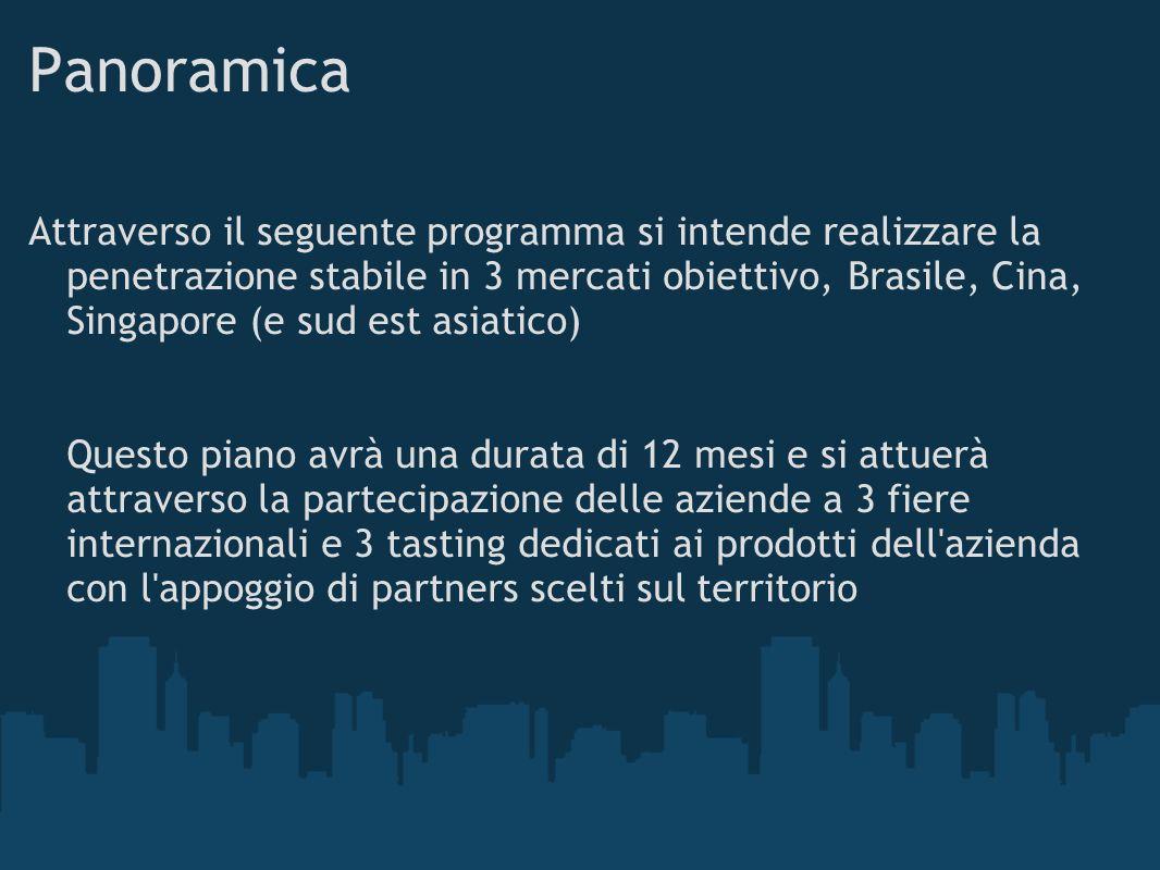 Panoramica Attraverso il seguente programma si intende realizzare la penetrazione stabile in 3 mercati obiettivo, Brasile, Cina, Singapore (e sud est