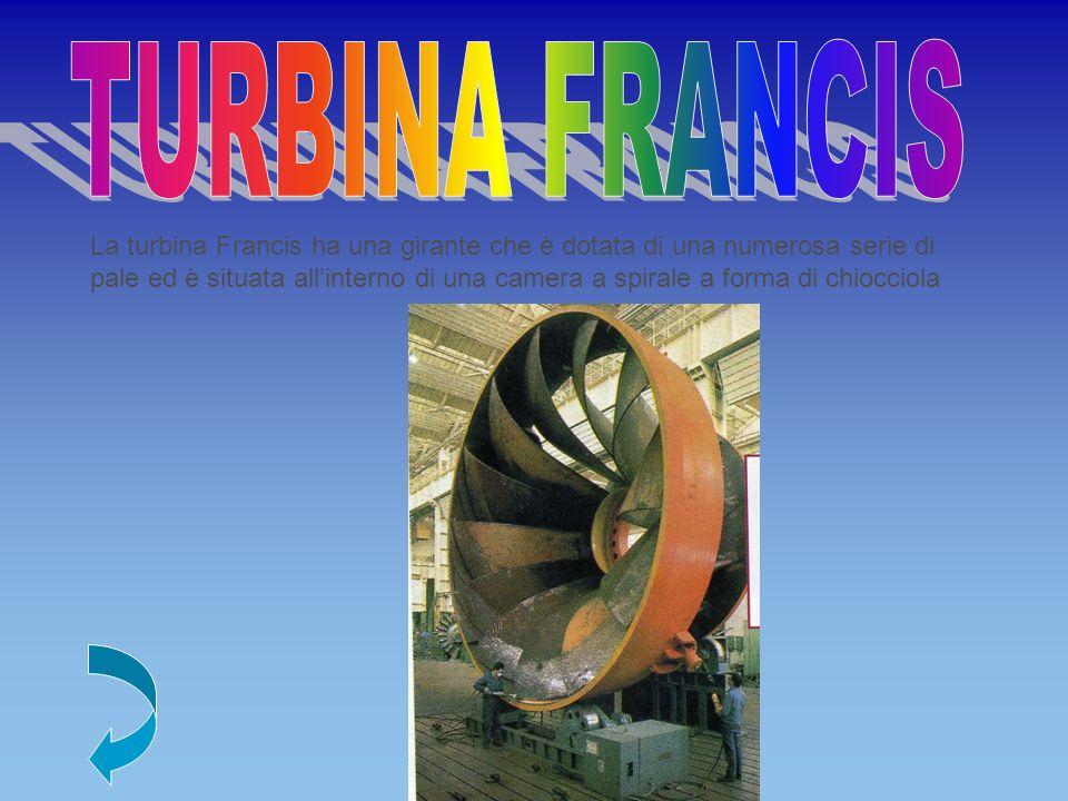 La turbina Francis ha una girante che è dotata di una numerosa serie di pale ed è situata allinterno di una camera a spirale a forma di chiocciola